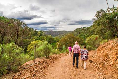 Boutique Full-Day Wildlife Tour from Sydney
