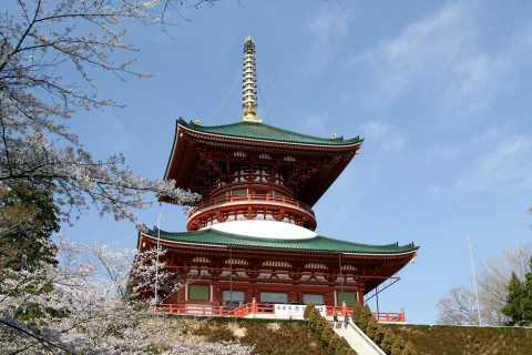 Narita: Narita-san Shinsho Temple Layover Tour