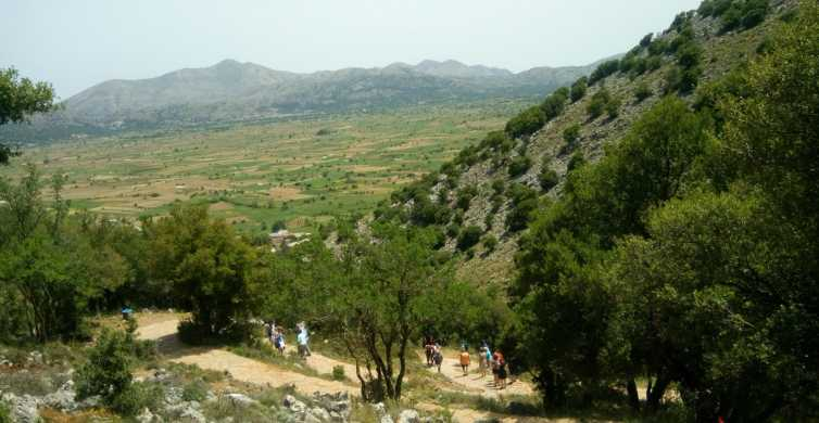 Winery Tour & Tasting, Lasithi Plateau and Psychro Cave