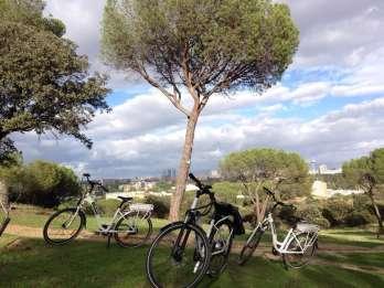 Madrids River Side & Casa de Campo Elektro-Fahrradtour. Foto: GetYourGuide