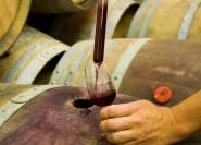 Verona: Erstellen Sie Ihren eigenen Wein