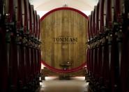 Verona: Amarone-Verkostung in der Cantine Tommasi
