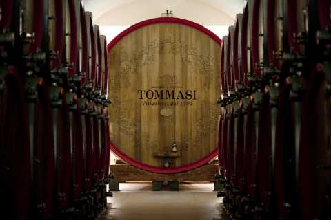 Verona: Amarone Tasting at Cantine Tommasi