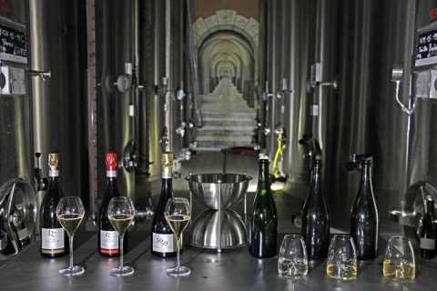 Champagne Dom Caudron Experience & Tasting