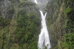 Madeira em 1 Dia: Caminhada pela Levada no Vale Rabaçal