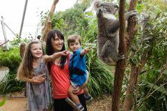 Sydney: Passe 2, 3 ou 4 com várias atrações e cruzeiro opcional