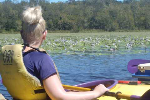 Self-Guided Noosa Everglades Kayak Trip