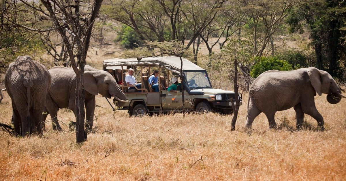 3-Day Maasai Mara Luxury Safari
