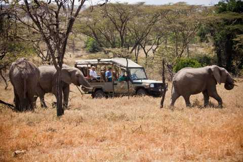 3-Day Maasai Mara Luxury Safari - Experience Kenya by Air