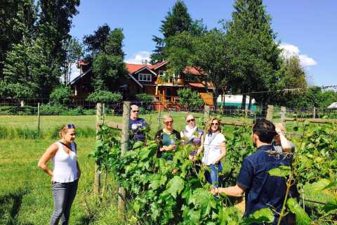 6-Hour Victoria to Cowichan Wine Tour