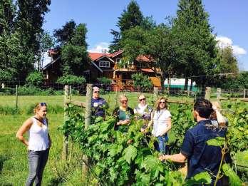 6-Stunden-Victoria zu Cowichan Wine Tour