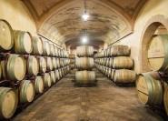 Von Brescia: 3-stündige Franciacorta Wine Tour & Tasting