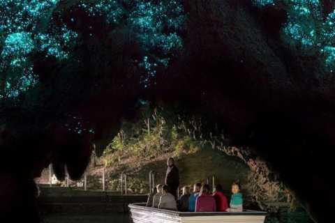 Waitomo Caves and Kiwi House