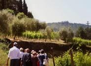 Verona: Amarone Weinprobe