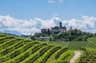 Von Mailand: Barolo Wine Tour & Tasting