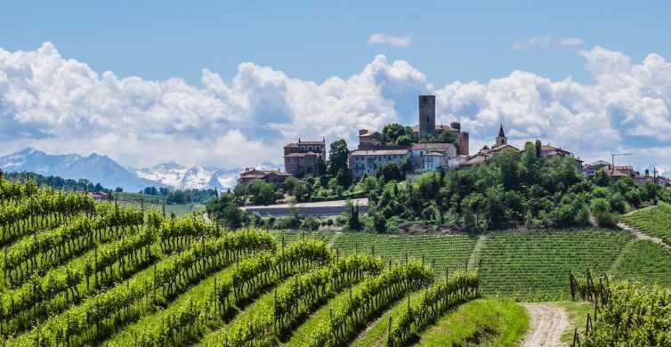 From Milan: Barolo Wine Tour & Tasting