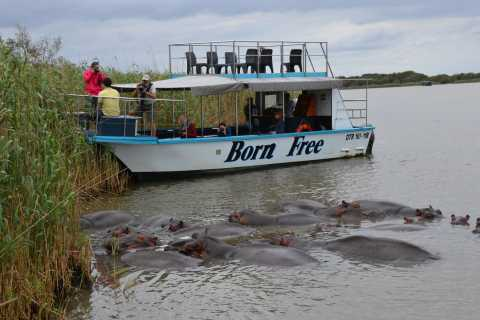 From Durban: St. Lucia Wetlands Private Boat Ride
