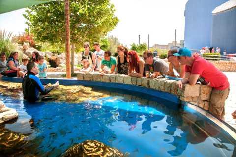 Mallorca: Palma Aquarium Ticket