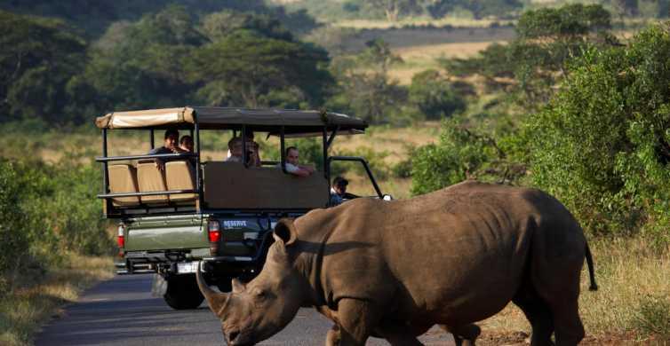 Van Durban: Full-Day Hluhluwe-Umfolozi Park Tour