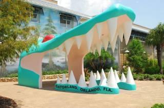 Wildes Orlando: Gatorland - Hauptstadt der Alligatoren
