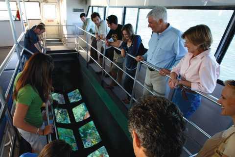 Key West: Glass-Bottom Boat Reef Eco-Tour