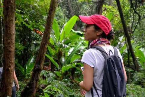 Valle de Mae Sa: tour en bici y a pie desde Chiang Mai