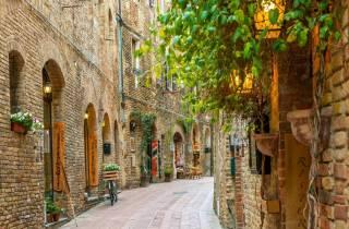 San Gimignano 2-Stunden Private Tour von Siena Geführte