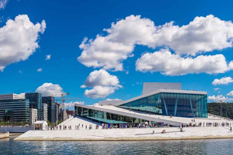 Oslo: Panorama-Sightseeingtour