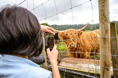 Edimburgo: Excursão Lago Ness e Terras Altas da Escócia