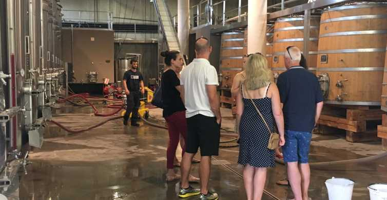 Ab Montpellier: Halbtagestour Weingüter und Pic Saint-Loup