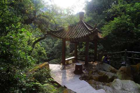 From Guangzhou: Zhaoqing Full-Day Private Tour