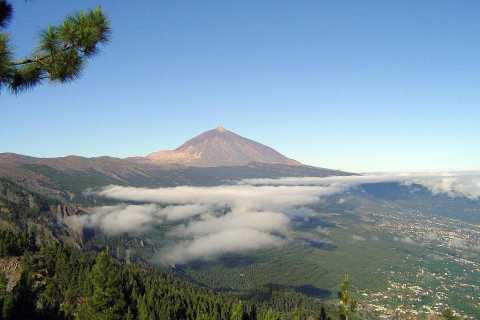 Tenerife: Private 6-Hour Essential Shore Excursion