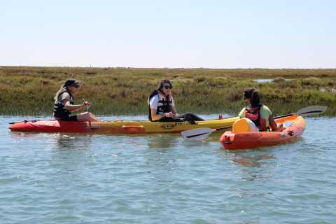 Ria Formosa National Park: Kayak Trip