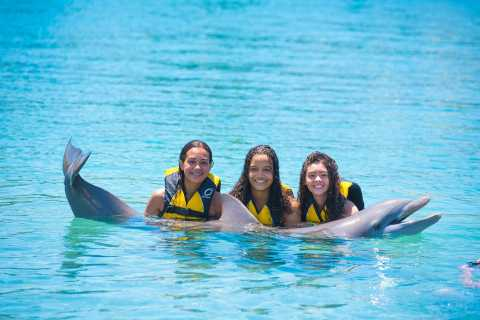 Royal Dolphin Swim at Ocean World, Puerto Plata