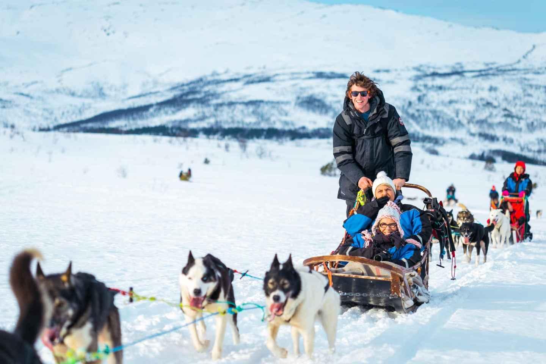 Tromsø: Geführte Husky-Schlittentour mit Mittagessen