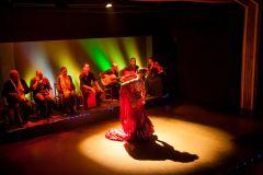 Barcelona: Show de Flamenco