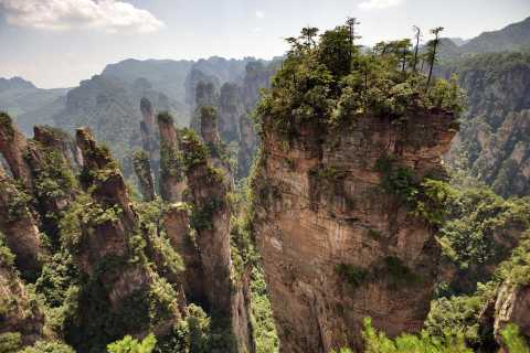 Zhangjiajie National Forest Park: Private Day Tour