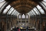 Hyde Park and South Kensington Museums Tour in Italian