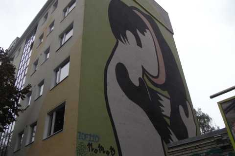 Berlin: Private Alternative City Tour with Murals and Squats
