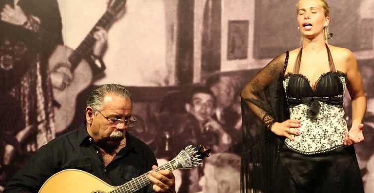 Lisbon: Half-Day Night Group Tour w/ Fado Dinner Show