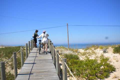 Faro Bike Tour through the Beautiful Ria Formosa
