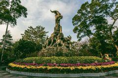 Treinador de 8 horas e Walking Tour dos destaques de Guangzhou