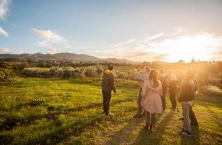 Ab Rom: Ausflug aufs Land mit Weinprobe