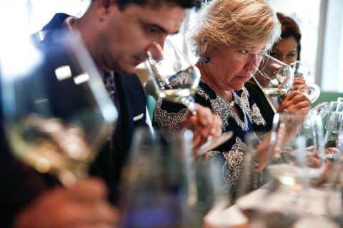Santiago: Concha y Toro Winery 4–Hour Tour & Sommelier Class