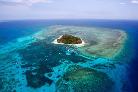 From Cairns: 40-Min Scenic Reef Window Seat Airplane Flight