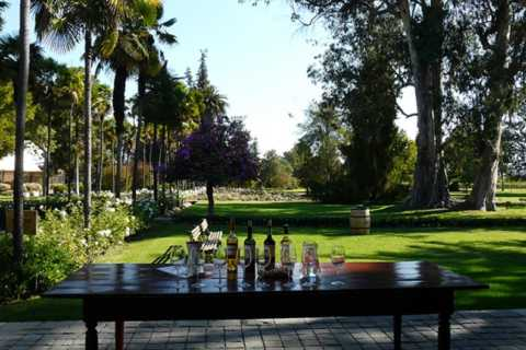 Private Tour: Premium Undurraga Vineyard Experience