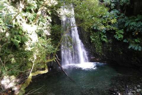 Azores - Sanguinho the Lost Village Tour