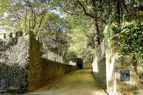 O Contador de Histórias: Excursão a Pé pelo Porto