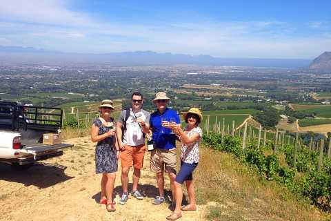 Constantia Full Day Wine Tour from Cape Town
