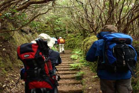 Teneriffa: Tagestour mit Wanderung und Kultur